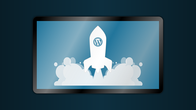 WordPress Website Maintenance Checklist: 50+ Essential Tips & Practices (Infographic)
